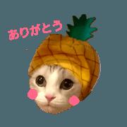 สติ๊กเกอร์ไลน์ hikaru_20190119174103