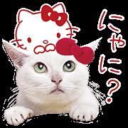 สติ๊กเกอร์ไลน์ อานาโกะจัง × เฮลโลคิตตี