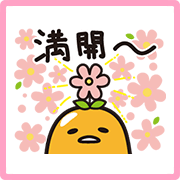 สติ๊กเกอร์ไลน์ gudetama Sakura Lot Stickers