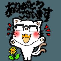 白猫又のシロ助