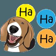 สติ๊กเกอร์ไลน์ บีเกิ้ล_อารมย์ดี_ภาษาอังกฤษ