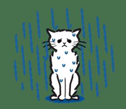 I am a cat. sticker #53062