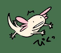 """We are Axolotl """"Upa-san"""" sticker #57216"""