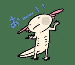 """We are Axolotl """"Upa-san"""" sticker #57230"""