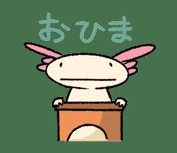 """We are Axolotl """"Upa-san"""" sticker #57248"""