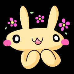 conejoro rabbit