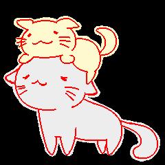 soft cat