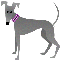 ITAGREMY: Fun Life of Italian Greyhound!