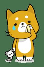 Kun-Kun sticker #64748