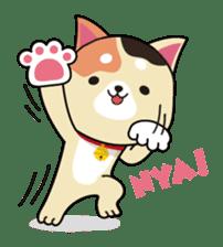 Kun-Kun sticker #64768