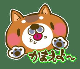 Cute animal sticker #64903