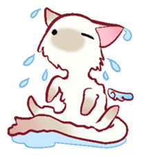 wing&tail(cat) sticker #66832