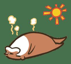 Kotsumetti of Small-clawed otter sticker #68513
