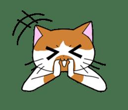 3 sisters' cat sticker #74272