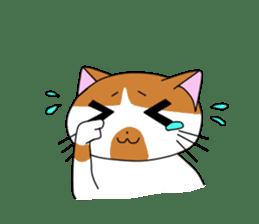 3 sisters' cat sticker #74277