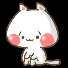 SHOBON cat