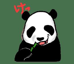 Animals of the zoo sticker #81876