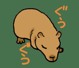 Animals of the zoo sticker #81889