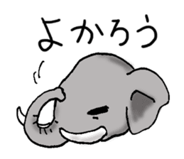 Animals of the zoo sticker #81906