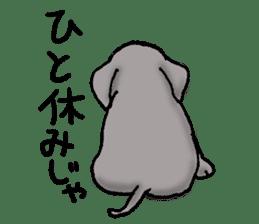 Animals of the zoo sticker #81909