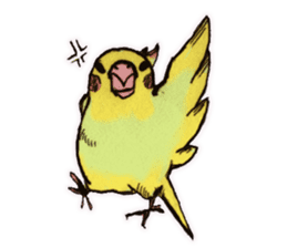 Birds STAMP vogel sticker #82017
