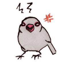 Birds STAMP vogel sticker #82025
