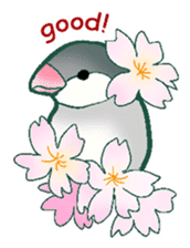 wing&tail (bird) sticker #82711