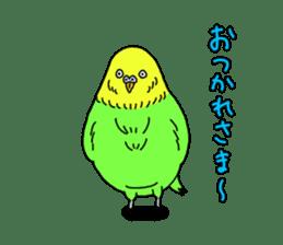 Parakeet! sticker #87238