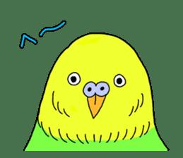 Parakeet! sticker #87240