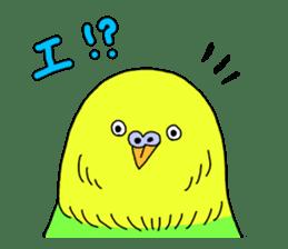 Parakeet! sticker #87242