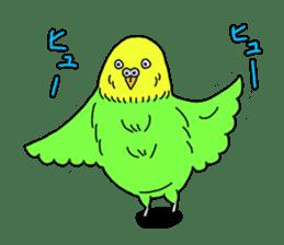 Parakeet! sticker #87243