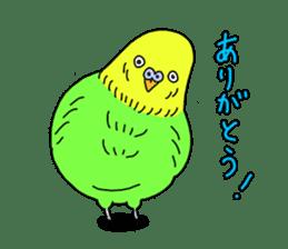 Parakeet! sticker #87247