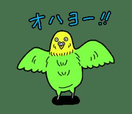 Parakeet! sticker #87251