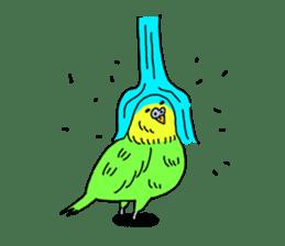 Parakeet! sticker #87253