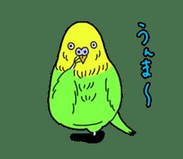 Parakeet! sticker #87255