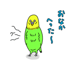 Parakeet! sticker #87259