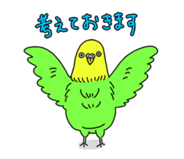 Parakeet! sticker #87266