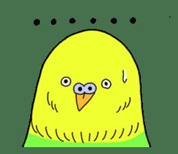 Parakeet! sticker #87268