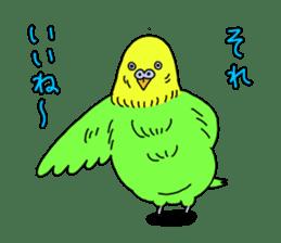 Parakeet! sticker #87272