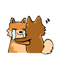 Pomeranian GON sticker #94519