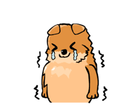 Pomeranian GON sticker #94529