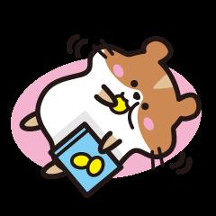Cute hamster !