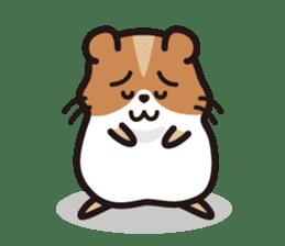 Cute hamster ! sticker #96187