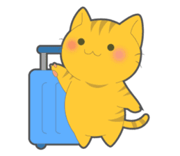 Every day you want help of cat sticker #97552