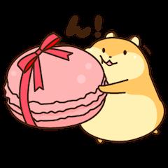 Petit Ham