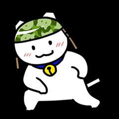 Captain cat Ticho