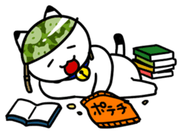 Captain cat Ticho sticker #103383