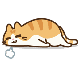 Trill the cat sticker #106984
