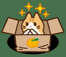 Trill the cat sticker #106986