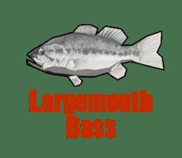 Blackbass sticker #109149